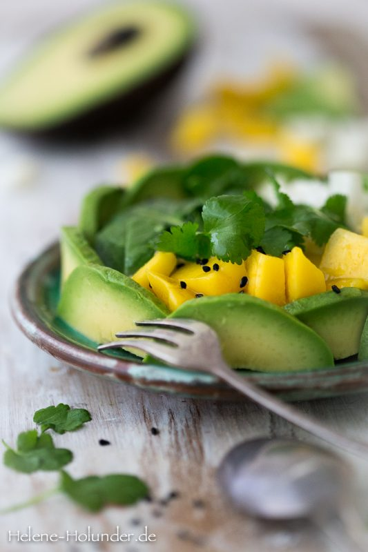 Vegan Avocado Bowl, vegan, Helene Holunder