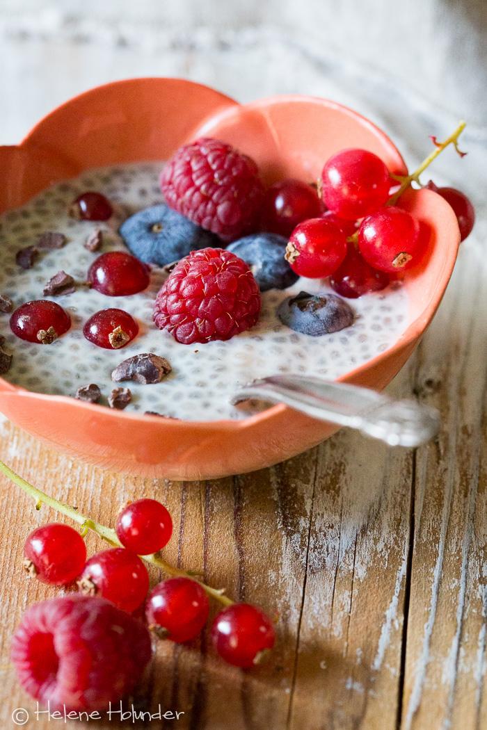 Chia Pudding mit frischen Früchten - mein zuckerfreies Frühstück! - Helene Holunder